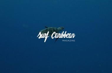 SUGARCANE, la dernière vidéo d'Arthur Bourbon (Reef) dans les Caraïbes